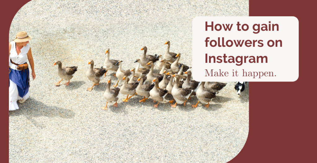 learn to gain followers on Instagram
