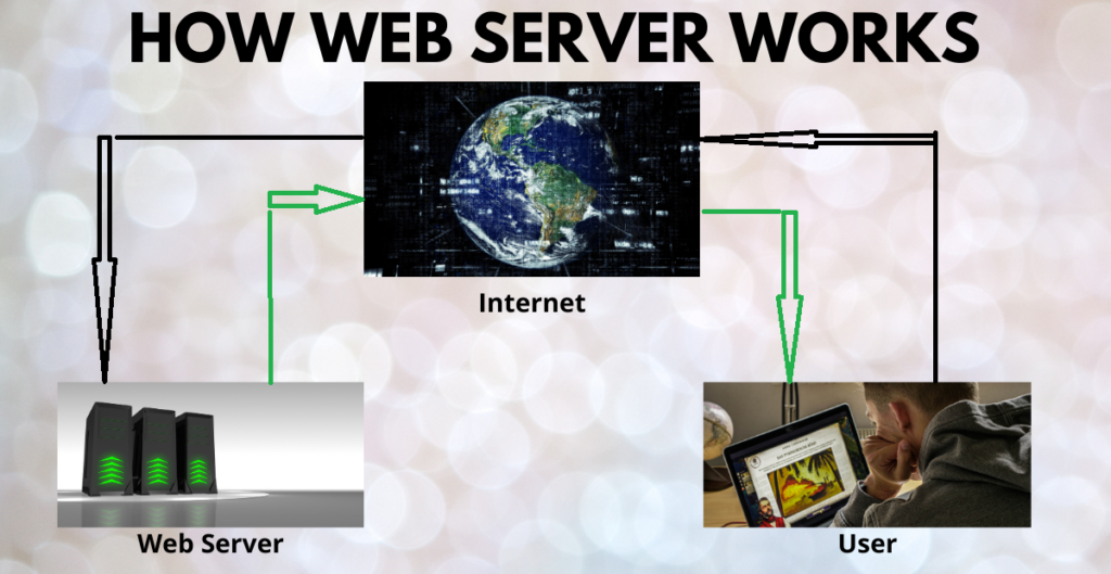 What is web hosting and how web server works.