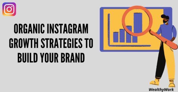 Instagram Growth Organic