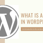 How to use tag in a wordpress.