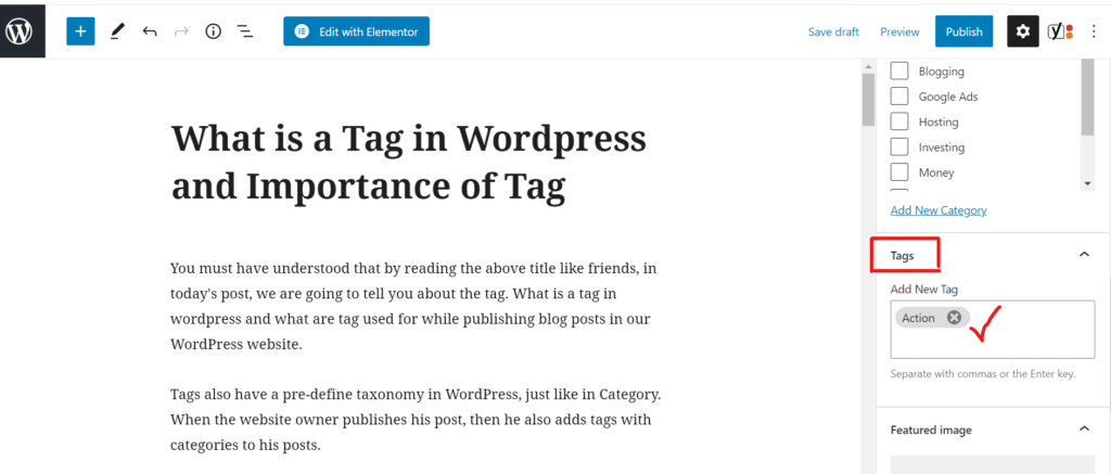 What is a tag in wordpress and how to use it.